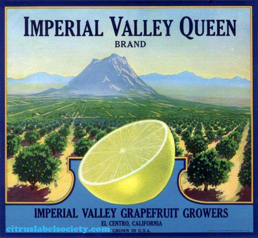 Imperial Valley Queen Brand Grapefruit